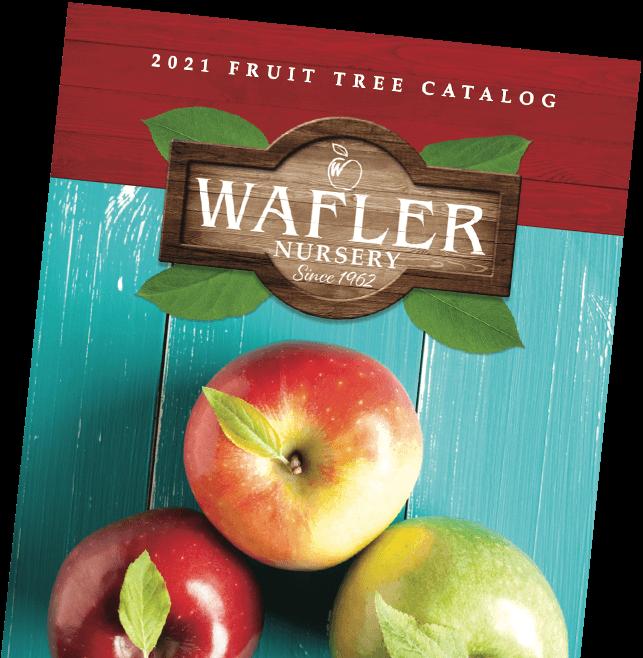 2021 Wafler Fruit Tree Catalog