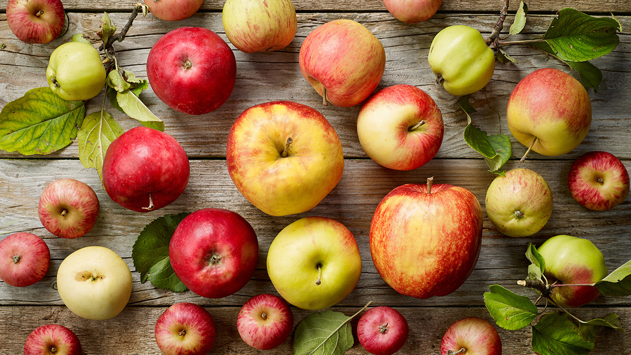 Wafler Apple Varieties